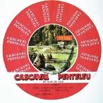 Cascaval Penteleu