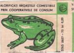 Cutie Broaste 1977