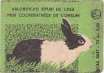 Cutie Iepure 1977