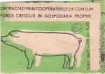 Cutie Cooperativele de Consum Porc 1977