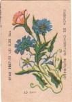 Cutie Flori 1978