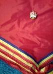 Cravata si Insigna Pionier