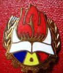 Insigna de Pionier