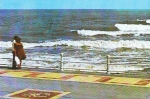 Faleza 1983