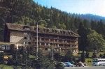 Hotel Bradul 1966
